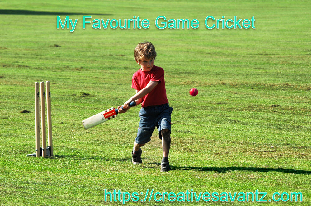 my favourite game cricket essay