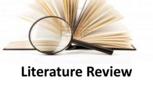 litarture review